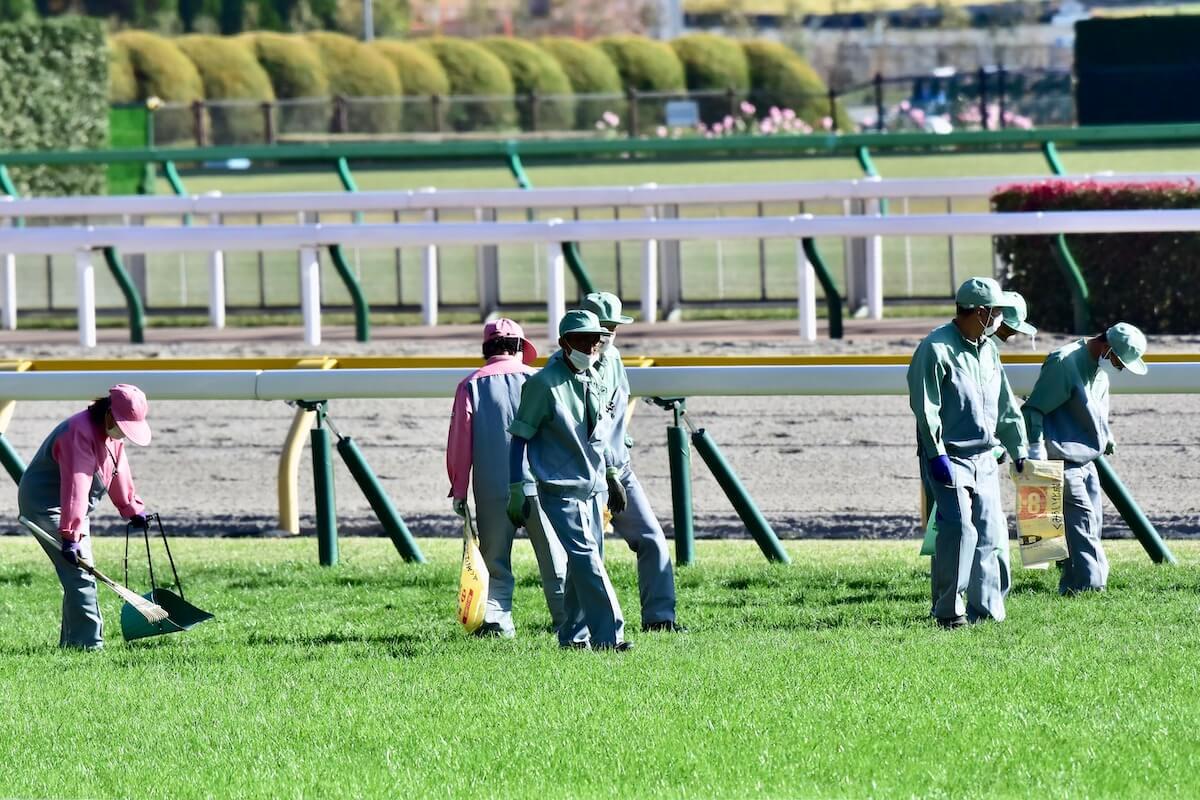 競馬 ウイニング